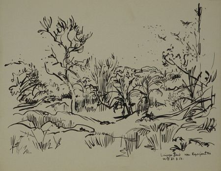 Click the image for a view of: Limpopo Bank. 1952. Brush & ink. 347X437mm