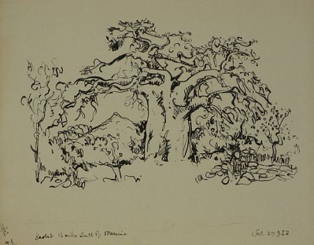 Click the image for a view of: Baobab. 1952. Brush & ink. 344X434mm