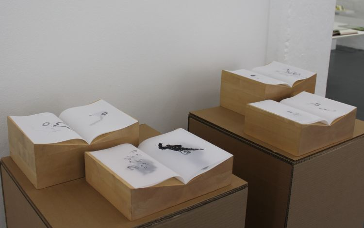 Click the image for a view of: Jonah Sack. Artist's books (installation view). 2014. Ink on transparent paper, hand-sewn