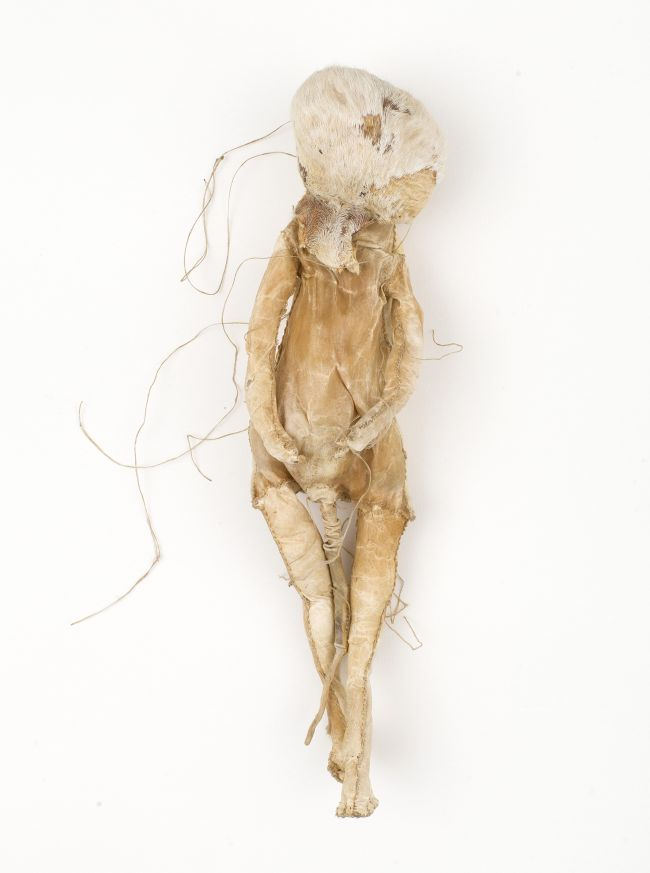 Click the image for a view of: Rosemarie Marriott. geheim 1. 2014. Tanned antelope skin. 380X110X70mm