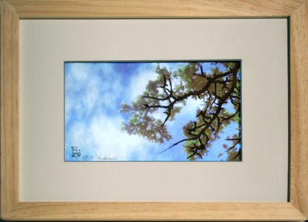 Click the image for a view of: Underbrush. 2009. etching, sugarlift, LCD with video & machinima. edition 5. 280 x 255mm