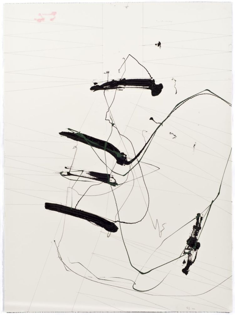 Click the image for a view of: Jaco van Schalkwyk. FUN AND GAMES…Whistle. 2012. Lithographic ink, pencil on paper. 760X560mm