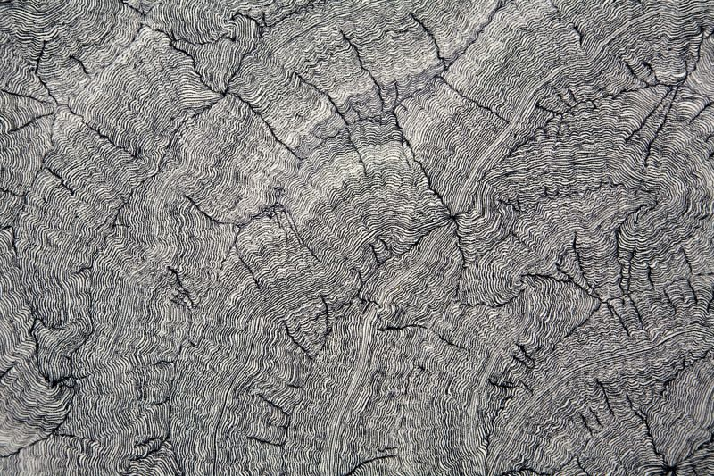 Click the image for a view of: Deterministic Chaos Drawing #033 (detail).