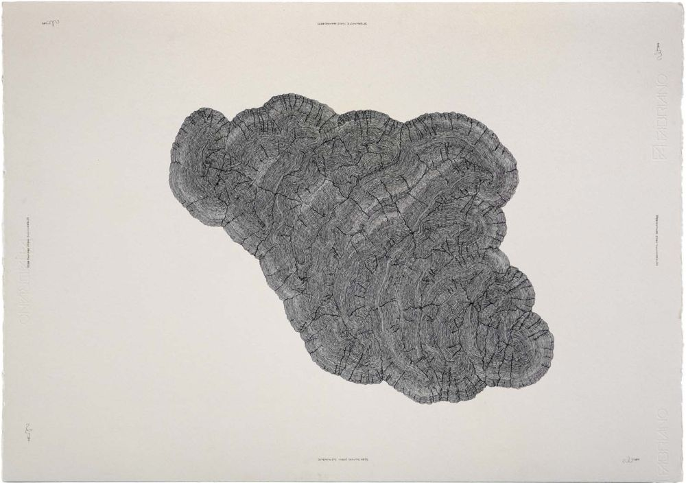 Click the image for a view of: Deterministic Chaos Drawing #033. 2012. Ballpoint pen on paper. 500X710mm