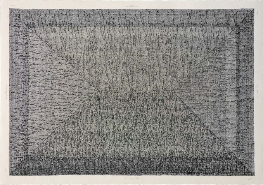 Click the image for a view of: Deterministic Chaos Drawing #032 (Aporue). 2012. Ballpoint pen on paper. 710X1000mm