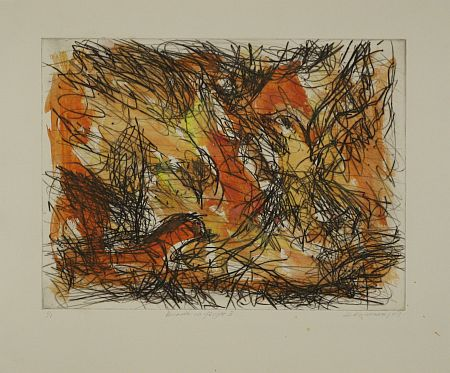 Click the image for a view of: David Koloane. Birds in Flight II. 2009. Hand coloured drypoint. 432X517mm