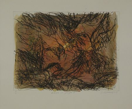 Click the image for a view of: David Koloane. Birds in Flight III. 2009. Hand coloured drypoint. 429X519mm