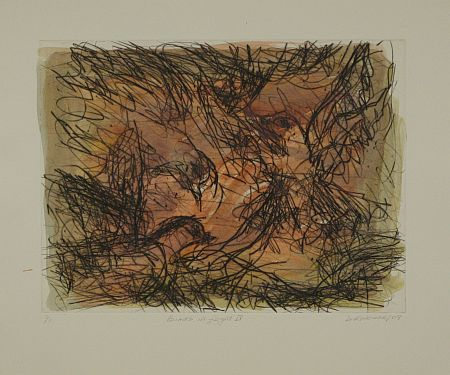 Click the image for a view of: David Koloane. Birds in Flight IV. 2009. Hand coloured drypoint. 432X517mm